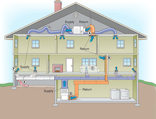 The Reason That Mold In The Basement Causes Health Issues, More Than In  Almost Any Other Area Of The Home Is That Most Homes Have Forced Air Heat,  ...